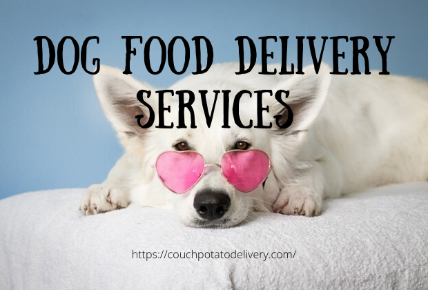 dog food delivery services