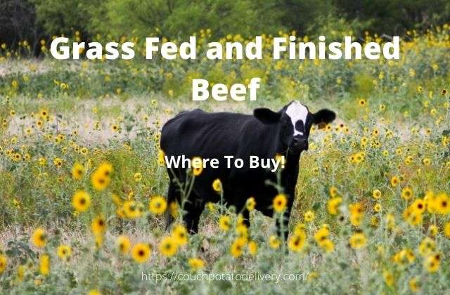 where to buy grass fed beef