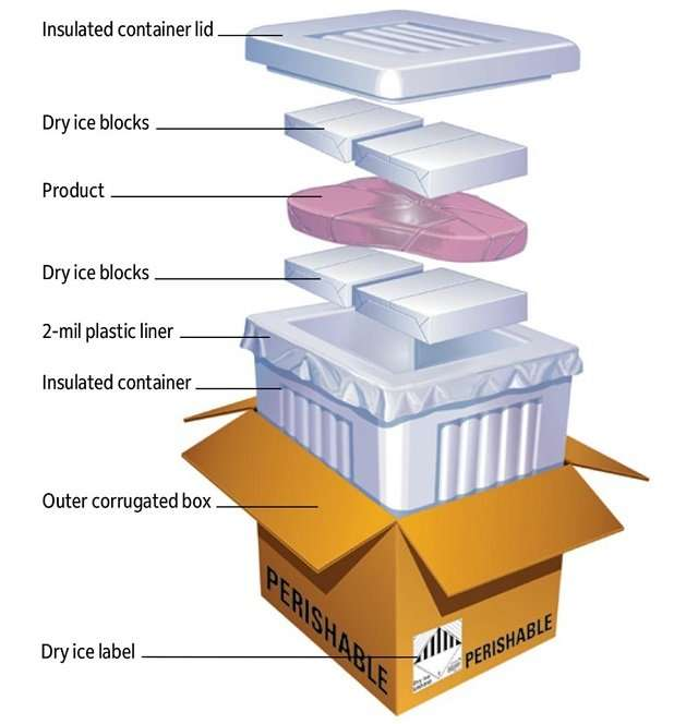 dry ice in box with packed frozen food